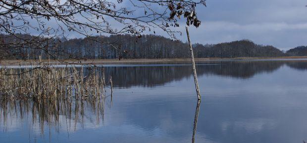 Der See im Winter