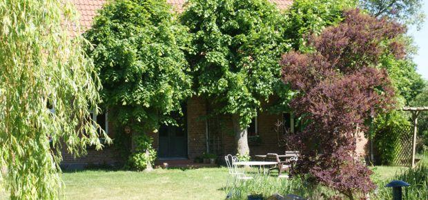 Das Haus mit den drei Linden